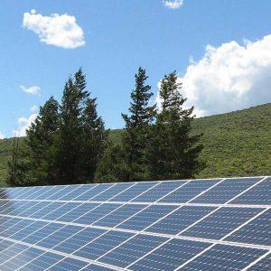 SwitchEnergy-zonnepanelen-groen-milieu-bomen